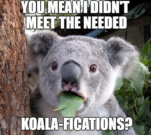 You mean to tell me I didn't meet the needed koala-fications?